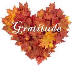 gratitude and flowers